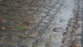 Closeup av kullersten i regnet stock video
