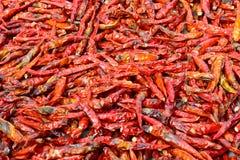 Closeup av låg-kvalitet torkade röda peppar Arkivfoto