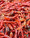Closeup av låg-kvalitet torkade röda peppar Royaltyfria Bilder