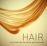 Closeup av långt mänskligt hår stock illustrationer