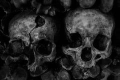 Closeup av mänskliga skallar som staplas på de arkivfoton