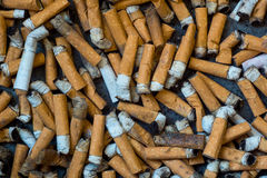 Closeup av många smutsiga cigaretter Arkivfoton
