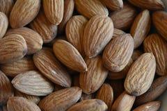 Closeup av mandelmuttrar Fotografering för Bildbyråer