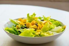 Closeup av ny och sund vegetarisk sallad med grönsallat och mango på vit bakgrund Fotografering för Bildbyråer
