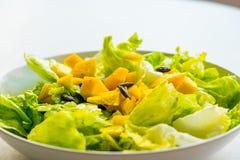 Closeup av ny och sund vegetarisk sallad med grönsallat och mango på vit bakgrund Royaltyfria Bilder