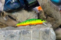 Closeup av proppfiske Proppar är en populär typ av hård-förkroppsligat fiska drag royaltyfria foton