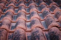 Closeup av röda taktegelplattor som täckas med svart mossa arkivfoto
