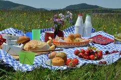 Closeup av Rich Picnic Food Royaltyfria Bilder