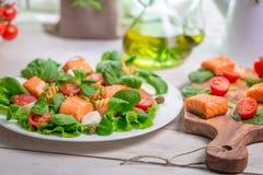 Closeup av sallad med nya grönsaker och laxen Royaltyfri Bild