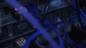 Closeup av servermaskinvarutrådar lager videofilmer