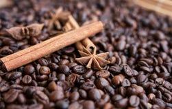 Closeup av stjärnaanis, nya doftande vaniljfröskidor, kanelbruna pinnar och kaffekorn och att krydda ingredienser för att laga ma arkivbilder