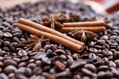 Closeup av stjärnaanis, nya doftande vaniljfröskidor, kanelbruna pinnar och kaffekorn och att krydda ingredienser för att laga ma royaltyfri foto