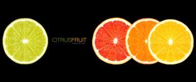 Closeup av sunda nya citrusfrukter r royaltyfri illustrationer