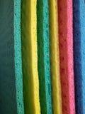 Closeup av svampkläder royaltyfri foto