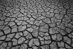 Closeup av torr sprucken jord med vid liv gräs Arkivfoto