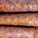 Closeup av Tuscan cigarrer Royaltyfri Bild