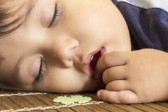 Closeup av ungt sova för pojke Fotografering för Bildbyråer