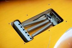 Closeup av vårar för elektrisk gitarr för tappning Arkivbild