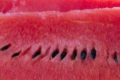 Closeup av vattenmelonen Arkivfoton