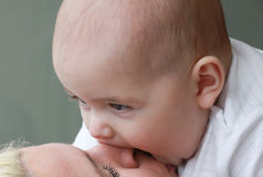 Closeup of a baby boy biting mother's nose Stock Images