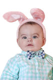 Closeup of baby boy with rabbit ears and bow tie on isolated background Stock Photography