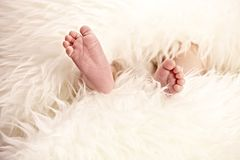 Closeup baby feet Stock Photo
