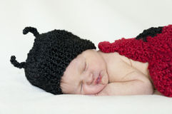 Closeup of baby with ladybug knit hat and bodice. Closeup of sleeping baby with knitted ladybug hat and bodice stock photography