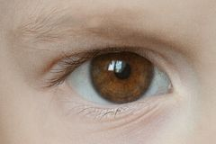 Closeup of baby`s brown eye. Closeup of one baby`s brown eye royalty free stock photos