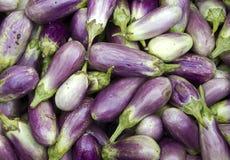 Closeup of fresh brinjal, eggplant