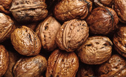 Closeup Background Of Wet Walnuts Royalty Free Stock Image