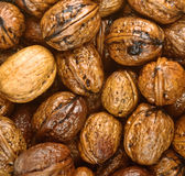 Closeup Background Of Wet Walnuts Royalty Free Stock Photos