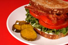Closeup of a bacon, lettuce and tomato sandwich with pickles, re royalty free stock photos