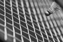 Closeup Badminton Royalty Free Stock Photography