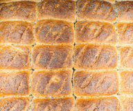 Closeup of baked rolls with poppy seeds. Attached to each other Stock Photos