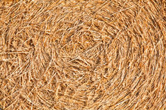 Closeup of a bale of hay Stock Image