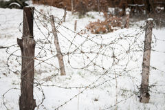 Closeup barb wire defense line Stock Images