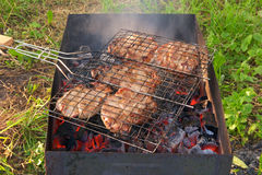 Closeup of barbecue grill with grilled meat Royalty Free Stock Images
