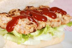 Closeup barbecue pork riblet with sauce Stock Photography