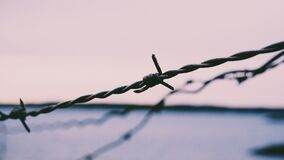 Closeup of barbed wire