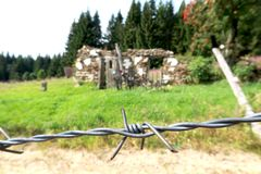 Closeup of barbed wire in former communism iron curtain in Bucina, National Park Sumava in the Czech Republic. Memory of deadly barrier on frontier crossing royalty free stock photography