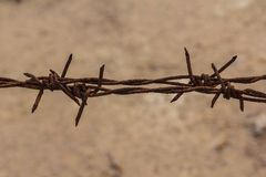Closeup Barbed wire macro old. Stock Images