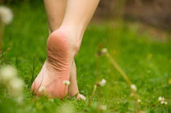 Closeup barefoot walking on grass, nice green. Color royalty free stock photography