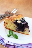 Closeup of a beautiful  blueberry pie Royalty Free Stock Image