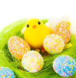 Colorful eggs with little chick Royalty Free Stock Image