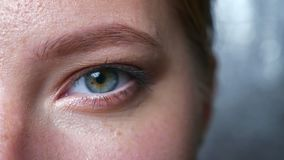 Closeup beautiful eye of caucasian female looking at camera straight, blinking, indoors, grey background.  stock footage