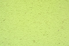 Closeup beautiful new green uneven plaster surface Royalty Free Stock Photos