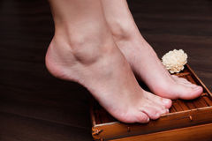 Closeup of a beautiful pedicured woman feet Royalty Free Stock Images