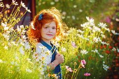 Closeup beautiful portrait ginger curly little girl in the blossoming flower garden.  Royalty Free Stock Image