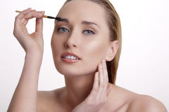 Closeup beautiful woman with eyebrow brush tool Royalty Free Stock Image