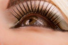 Closeup of beautiful woman's eye Stock Photography